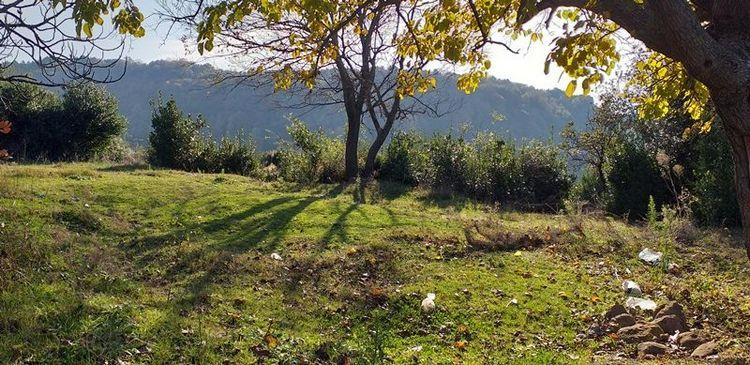 Dağlar Köyü'de312m275000TLSatılıkArsa